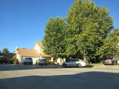 39345 FOSTORIA CT, Palmdale, CA 93551 - Photo 1