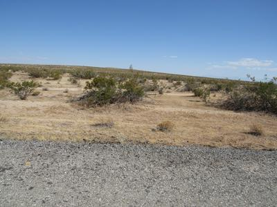 287-062-10-00-2 20 MULE TEAM ROAD, California City, CA 93523 - Photo 2