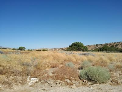 E BARREL SPRINGS ROAD, Palmdale, CA 93550 - Photo 2