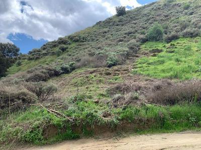 ELVIRA, Castaic, CA 91384 - Photo 1