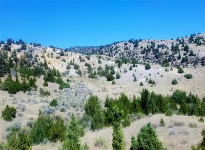 TRACT 6A TBD GARDEN CREEK ROAD, Alder, MT 59710 - Photo 2