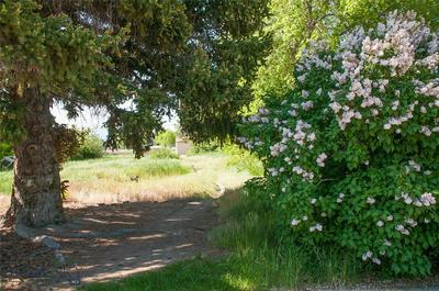 456 THOMSEN AVE, DILLON, MT 59725 - Photo 2