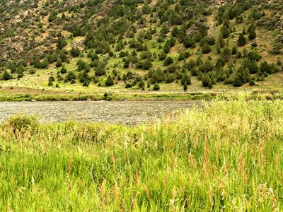 TBD N BEARTRAP CANYON ROAD, Norris, MT 59745 - Photo 1