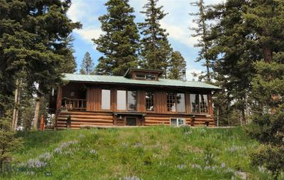 #25 GOAT MOUNTAIN CABINSITES, Wilsall, MT 59086 - Photo 1