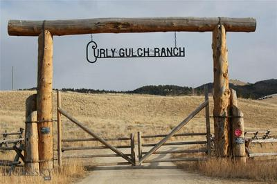 151 CURLY GULCH RD, Wise River, MT 59727 - Photo 1