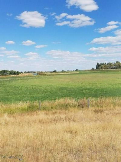 NHN 1ST LANE, Fairfield, MT 59436 - Photo 1