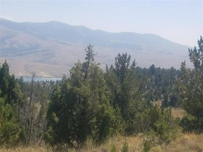 PARCEL 7 TBD GARDEN CREEK ROAD, Alder, MT 59710 - Photo 1