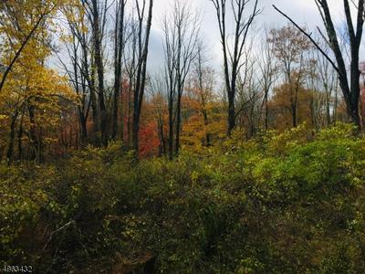 107 MOUNT LEBANON RD, Glen Gardner, NJ 08826 - Photo 1