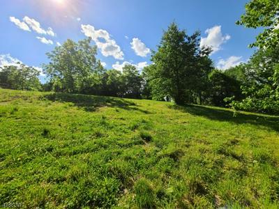 430 BUCKHORN DR, White Twp., NJ 07823 - Photo 2
