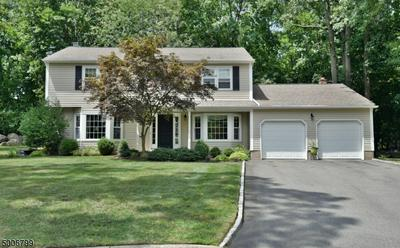 25 COLUMN CT, Ramsey Boro, NJ 07446 - Photo 1