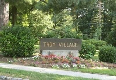 15-B TROY DR, Springfield Township, NJ 07081 - Photo 1