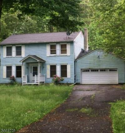 57 QUENBY MOUNTAIN RD, Liberty Twp., NJ 07838 - Photo 1