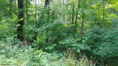 30 GOLDMINE RD, Mount Olive Twp., NJ 07828 - Photo 1