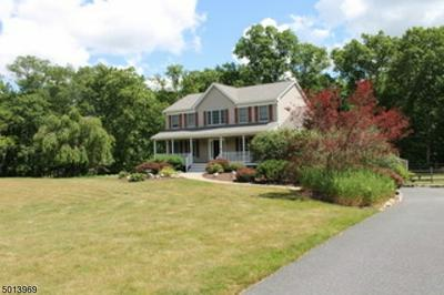 42 BIRCH RIDGE RD, Hardwick Twp., NJ 07825 - Photo 1