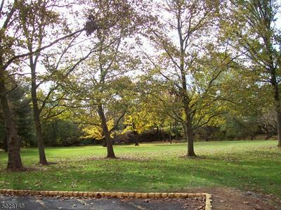 528 ANDRIA AVE APT 245, Hillsborough Twp., NJ 08844 - Photo 2