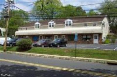 260 MAIN ST, Peapack Gladstone Boro, NJ 07934 - Photo 1