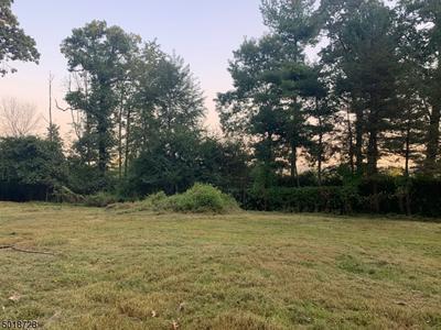 1541 COLES AVE, Mountainside Boro, NJ 07092 - Photo 2