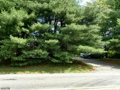 1446 COUNTY ROAD 519, Alexandria Twp., NJ 08825 - Photo 2