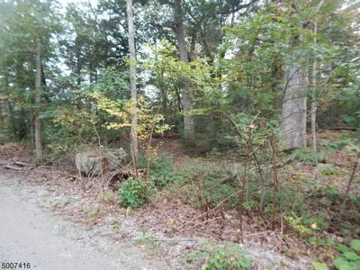 0 FLORENCE RD, West Milford Twp., NJ 07421 - Photo 2