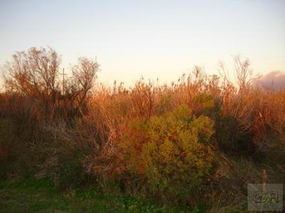 1092 N FAGGARD'S LN, Gilchrist, TX 77617 - Photo 1