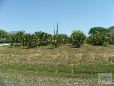 LOT 38 YACHT BASIN ROAD, Gilchrist, TX 77617 - Photo 2