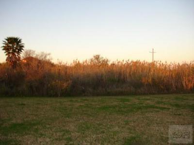 1092 N FAGGARD'S LN, Gilchrist, TX 77617 - Photo 2