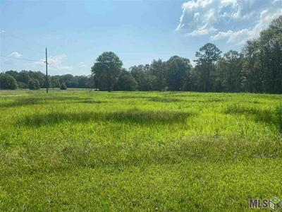 18158 B RANCH RD, Livingston, LA 70754 - Photo 1
