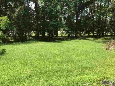 LOT 1 BLUFF RD, Prairieville, LA 70769 - Photo 2