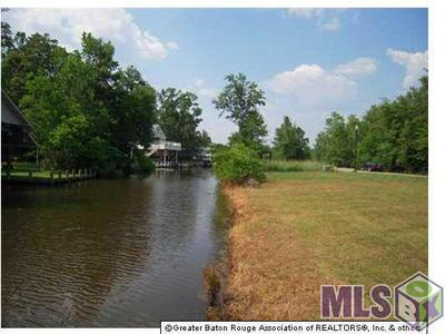 LOT 50 SWAMP DR, Springfield, LA 70462 - Photo 2