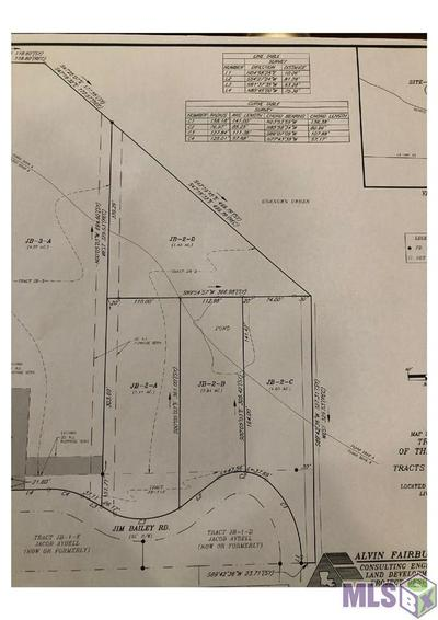 LOT JB-2-A GEORGE WHITE RD, Holden, LA 70744 - Photo 1