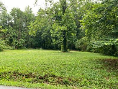 0 BLUFF RD, Dayton, TN 37321 - Photo 2