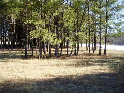 3 PALMER LAKE RD, Graysville, TN 37338 - Photo 2