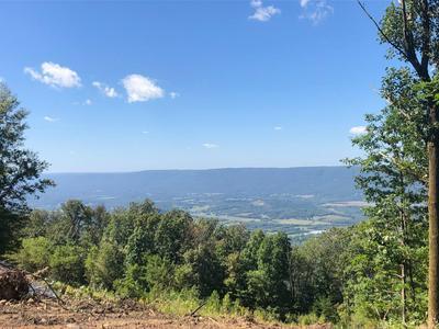 0 S U 127, Signal Mountain, TN 37377 - Photo 2