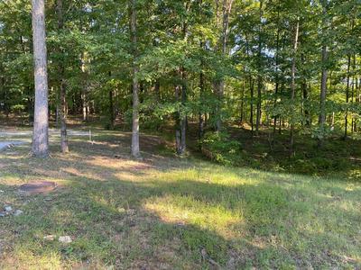 0 MAPLE HILL LN, Chickamauga, GA 30707 - Photo 2