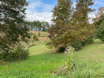 996 W 12TH ST, Chickamauga, GA 30707 - Photo 1