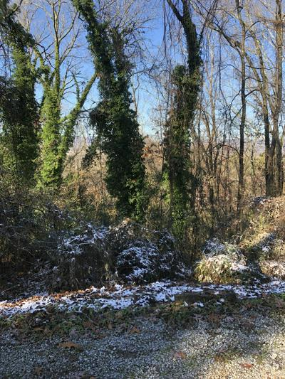 0 GILBERT ST, Chattanooga, TN 37406 - Photo 2