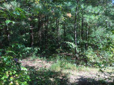 966 HURTT RD, Chickamauga, GA 30707 - Photo 2