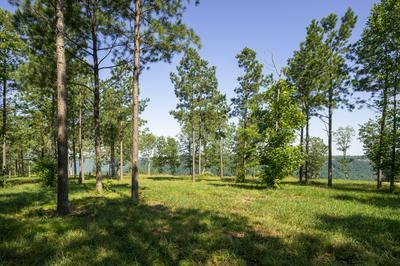 0 CUMBERLAND CIR, Jasper, TN 37347 - Photo 2