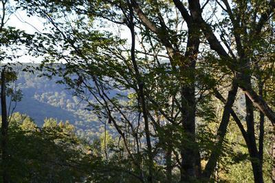 0 HIGH POINT LN, Jasper, TN 37347 - Photo 1