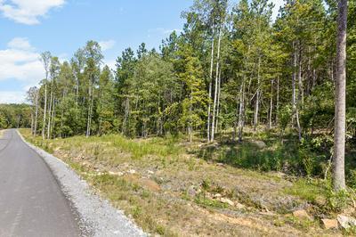 0 RAULSTON FALLS RD, Jasper, TN 37347 - Photo 2