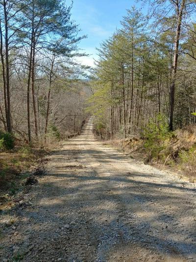 883 SHIPLEY FARM LN, Sale Creek, TN 37373 - Photo 1