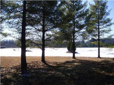 3 PALMER LAKE RD, Graysville, TN 37338 - Photo 1
