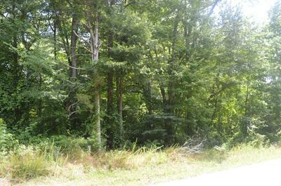 382 CAROLYN LN, Decatur, TN 37322 - Photo 2