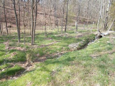 0000 MAYFLOWER RD, Sale Creek, TN 37373 - Photo 2
