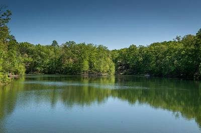 1 TWIN LAKE RD, Cloudland, GA 30731 - Photo 2