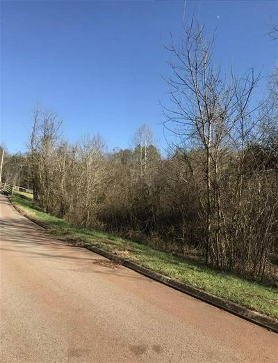 12.74 ACRE NE DOE RUN, Charleston, TN 37310 - Photo 2