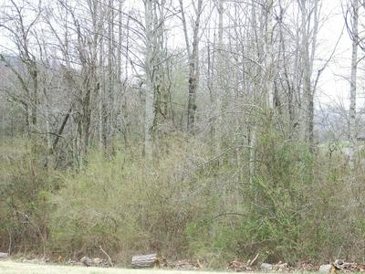 167 HIGHWAY 108, Palmer, TN 37365 - Photo 2