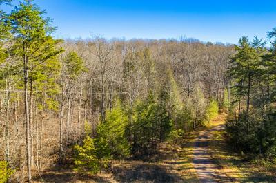 14 GRAY CREEK RD, Graysville, TN 37338 - Photo 2