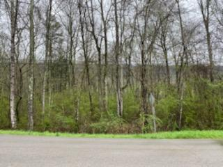 0 OLD DUNLAP RD, Whitwell, TN 37397 - Photo 2