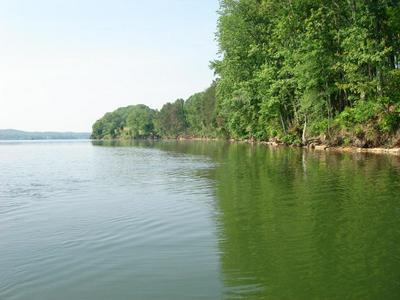 15764 CHANNEL POINT DR, Sale Creek, TN 37373 - Photo 1
